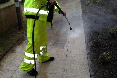presure-whashing-darlen-cleaning-1